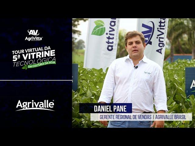 Daniel Pane   Gerente Regional de Vendas   Agrivalle Brasil