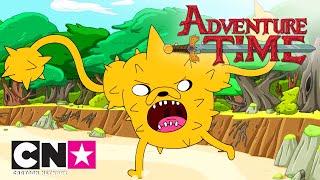Время приключений | Топ 10 трансформаций Джейка | Cartoon Network
