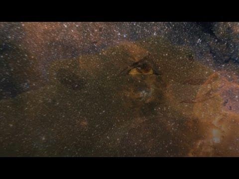 Bonobo - Kiara (AshChirn Mix)