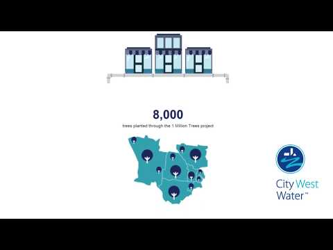 Animated Annual Report 2016/17