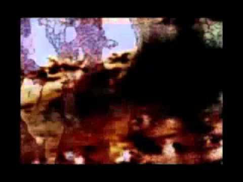 N. Horvath : Lypémanie ( 2005 )