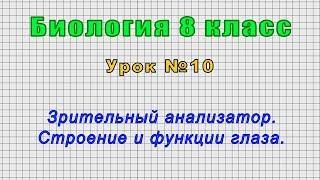Биология 8 класс (Урок№10 - Зрительный анализатор. Строение и функции глаза.)