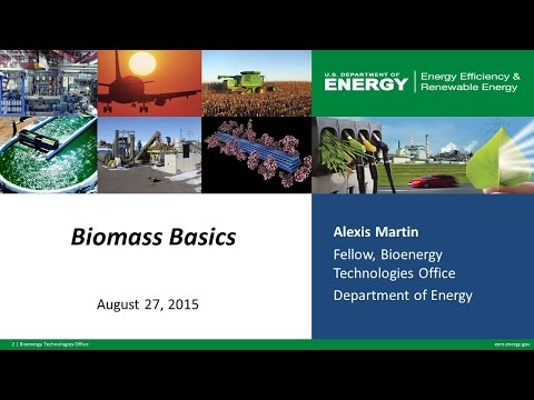 BioenergizeME Office Hours Webinar: Biomass Basics