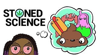 Stoned Girl Tries To Explain the Digestive System | STONED SCIENCE