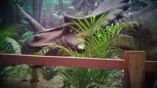 Dinoaventura
