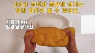 [식품안전체험관] 꼬마실험실 지방편