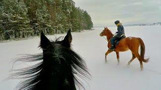 Конная прогулка в зимнем лесу(И не просто зимнем, а отчасти волшебном) Не как в последние годы, а со снегом, таким