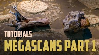 Quixel Megascans. Megascans Studio. Analyze of tool and render it assets in Vray. Part 1