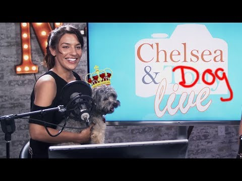 Tony & Chelsea LIVE: Chelsea Finds a Dog, the Theme is Animal Interactions