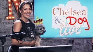Tony & Chelsea LIVE: Chelsea Finds a Dog, the Theme is Animal Interactions thumbnail
