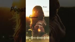 Pogathadi yen penne nee pona na engu povendi song //what's app status song