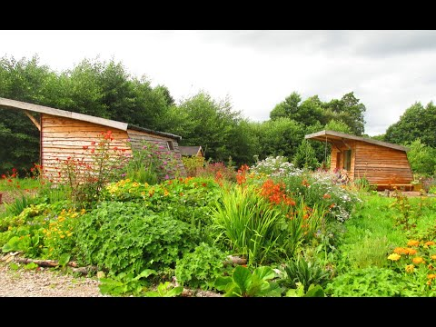 The Cabins Conwy - Romantic glamping in Snowdonia