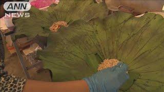 デリバリー増加でプラゴミも増加 「蓮の葉」で削減(20/05/09)