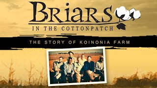 Briars in the Cottonpatch: the Story of Koinonia Farm