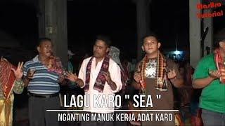 LAGU KARO SEA NGANTING MANUK KERJA ADAT KARO