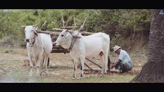 VILLAGERS ( MYANMAR )