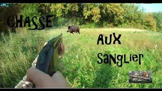 Chasse Beagle: Saison 2014/2015 Chasse Aux Sanglier