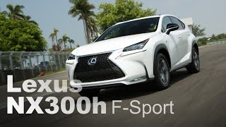 Lexus NX 300h F Sport 2014 Videos