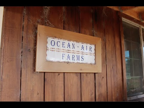 Ocean Air Farms | Organic Food | Fort Dick, CA