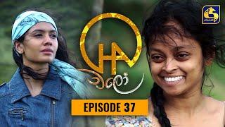 Chalo    Episode 37    චලෝ      01st September 2021 Thumbnail