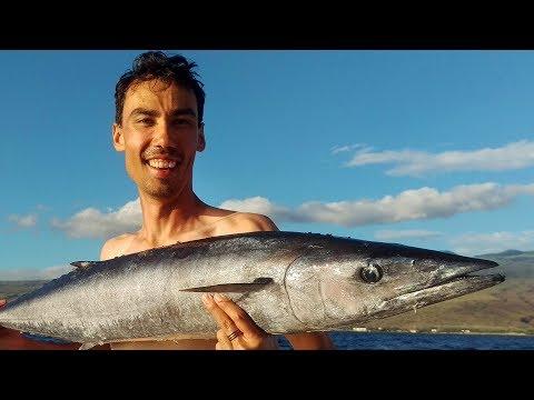 Offshore Ono (Wahoo) Fishing and Mahi Mahi Fishing - Kohala, Big Island, Hawaii