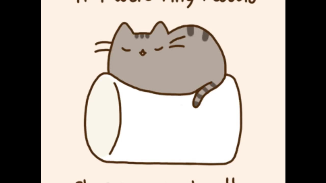 meet kitty purry pusheen