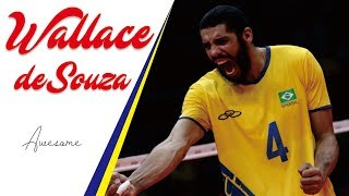 The Craziest Attacks by WALLACE de SOUZA | Brazil's Opposite