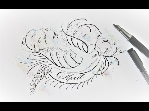 how to draw a flourish bird in normal pen - easy way for beginners