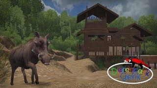 Warthogs | Dierenpark Genk
