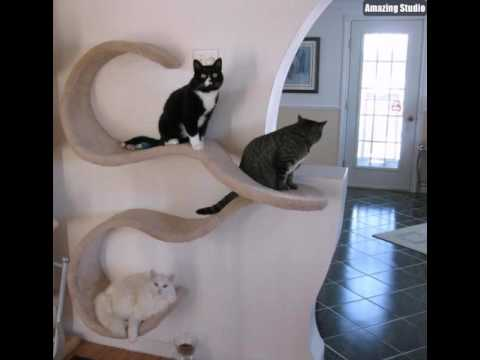 platzsparende m bel viele katzen an der wand youtube. Black Bedroom Furniture Sets. Home Design Ideas