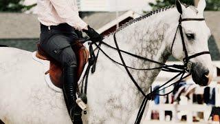 Риск конного спорта.