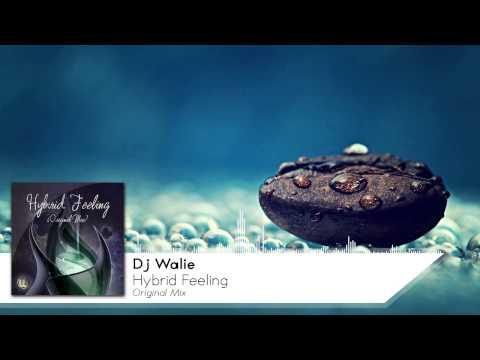 Walie - Hybrid Feeling