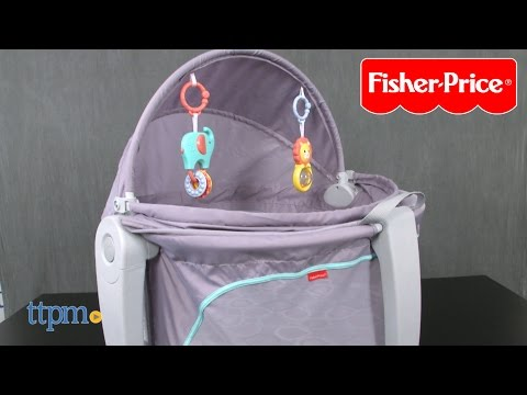 On-The-Go Baby Domes from Fisher-Price