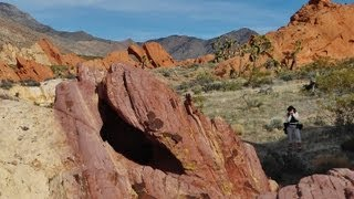 Whitney Pocket, Gold Butte Back Country Byway
