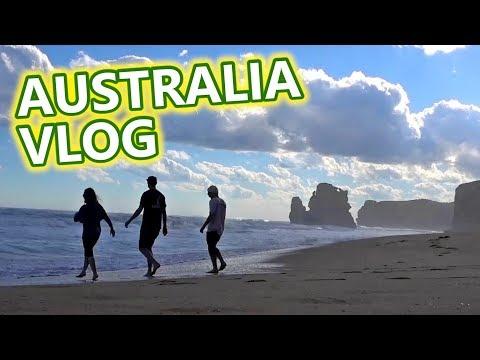 Australia Travel Vlog - Kangaroos, Ocean Road & Food