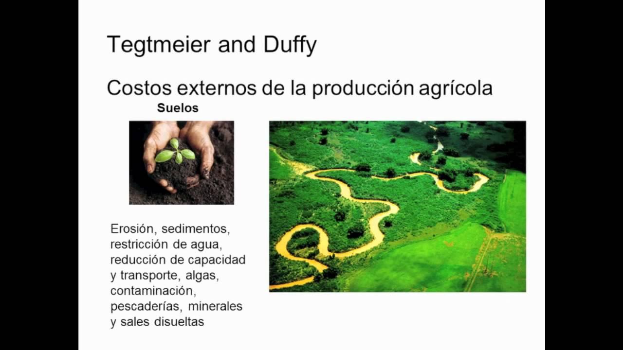 La Transición Agricola Sustentable 1ra Parte