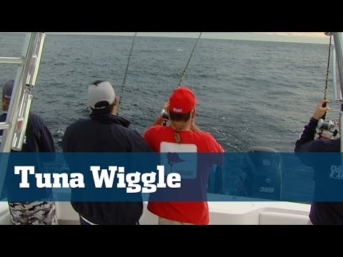 Funny Tuna Wiggle Clip Great For A Quick Laugh - Florida Sport Fishing TV