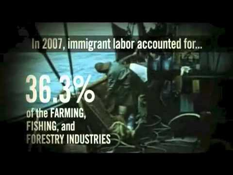 Interesting Facts About The History of Immigration