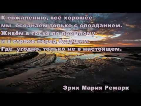 The Sadnss - Spasi menya