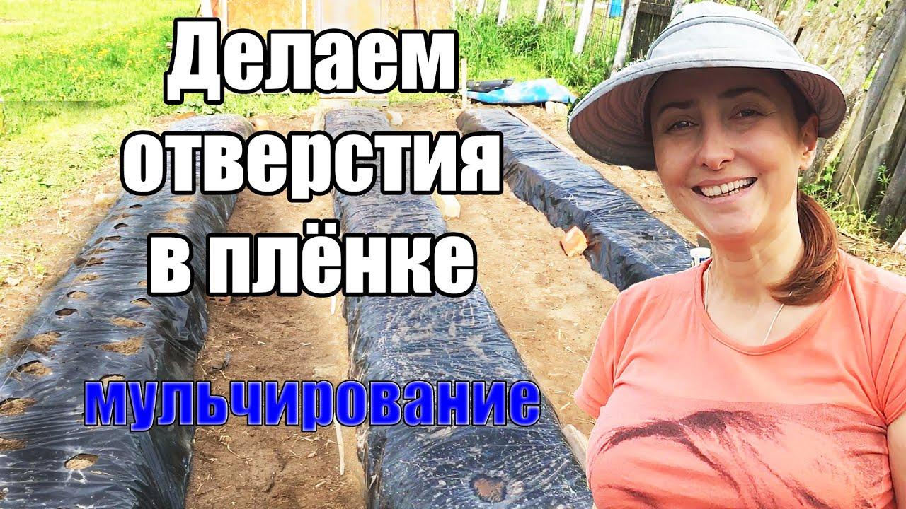 Как сделать ОТВЕРСТИЯ в ПЛЁНКЕ для КЛУБНИКИ | Лайфхаки для огорода