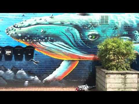 Bristol Graffiti And Street Art Documentary Part 1