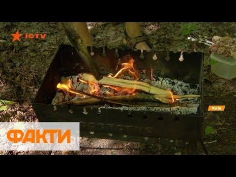 Где пожарить в Киеве шашлыки: цены за аренду беседок и штрафы