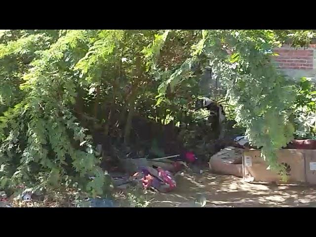 Morada a cielo abierto en el río Manzanares