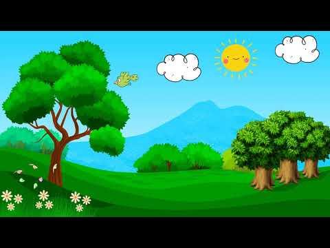 Background - Dia da Árvore - Fundo para vídeo - Opção 3