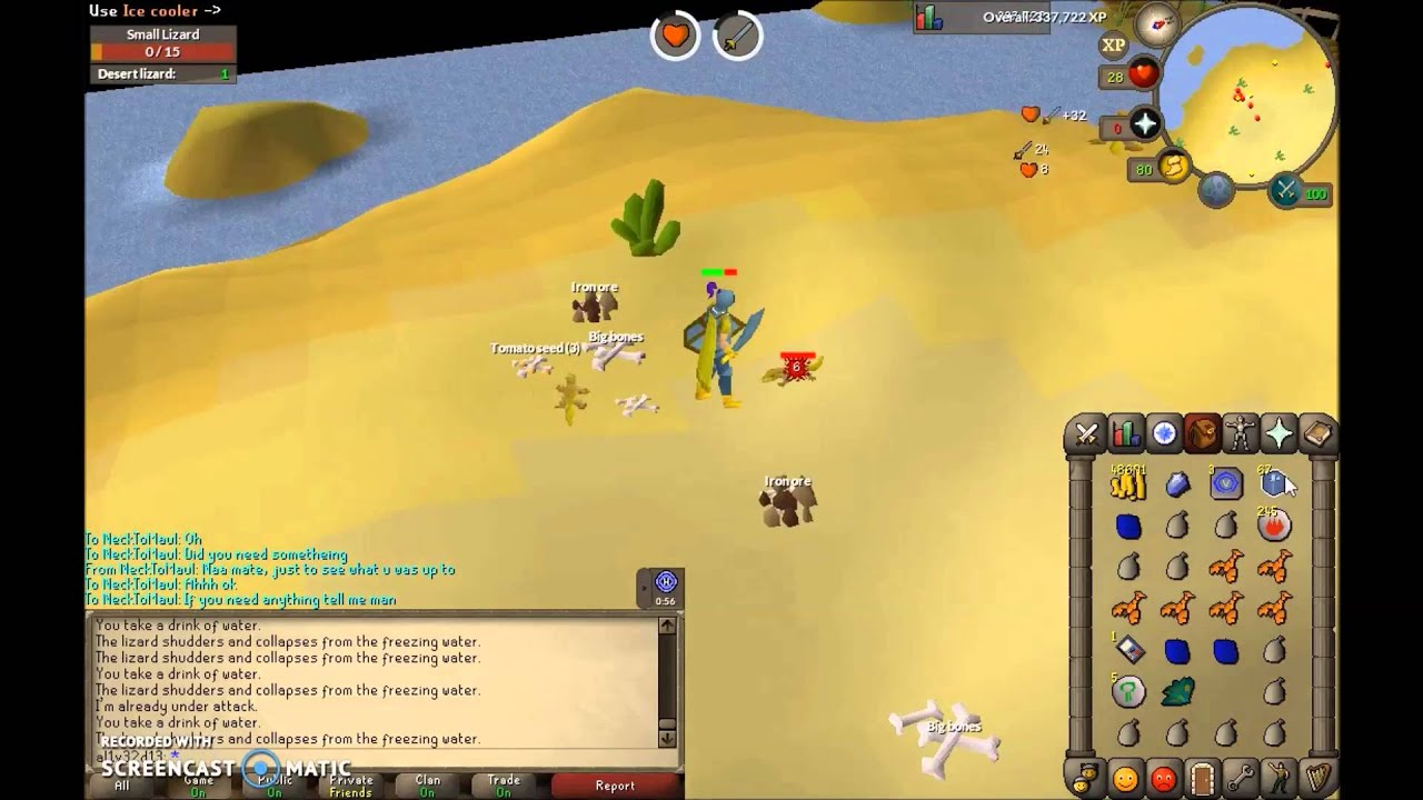 how to change slayer task desert lizard