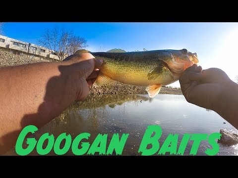 Fishing With Googan Baits For The First Time! Insane Creek Fishing - (Tulsa, OK)