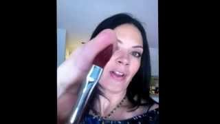 London Brush Company New Brush Shampoo Product Test With Skin Illustrator