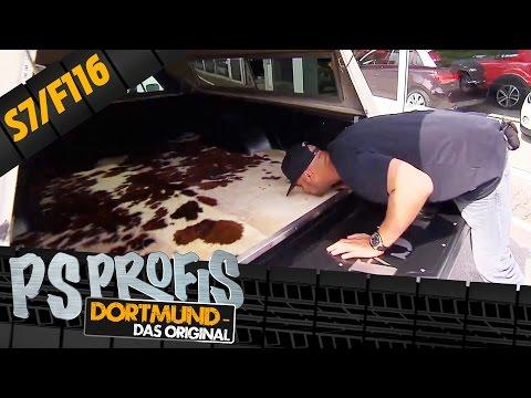 Dicke Amis & laute Motoren | Staffel 7, Folge 116 | PS Profis