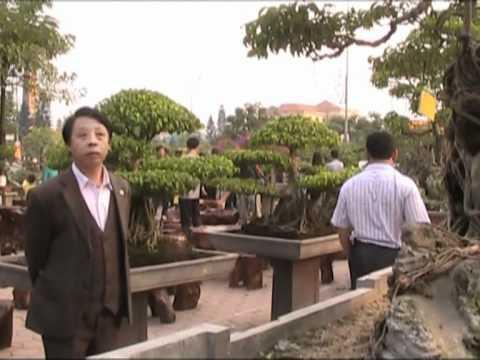 vietbonsai.vn - Lễ hội cây cảnh Hưng Yên năm 2011