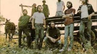 Ozark Mountain Daredevils-If I Only Knew